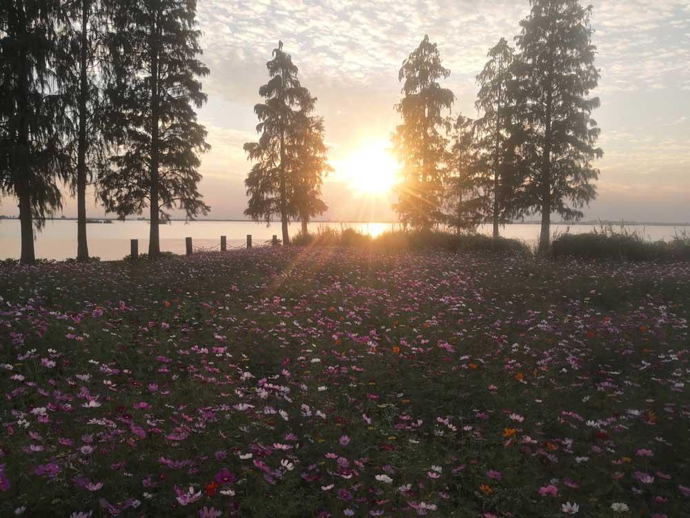 Sunset-lake.jpg