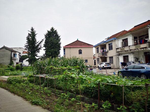 Village-garden-city.jpg