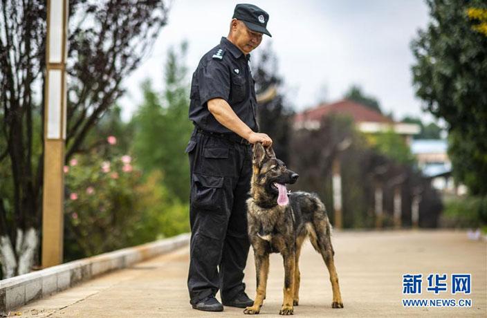 cloned-police-dog.jpg