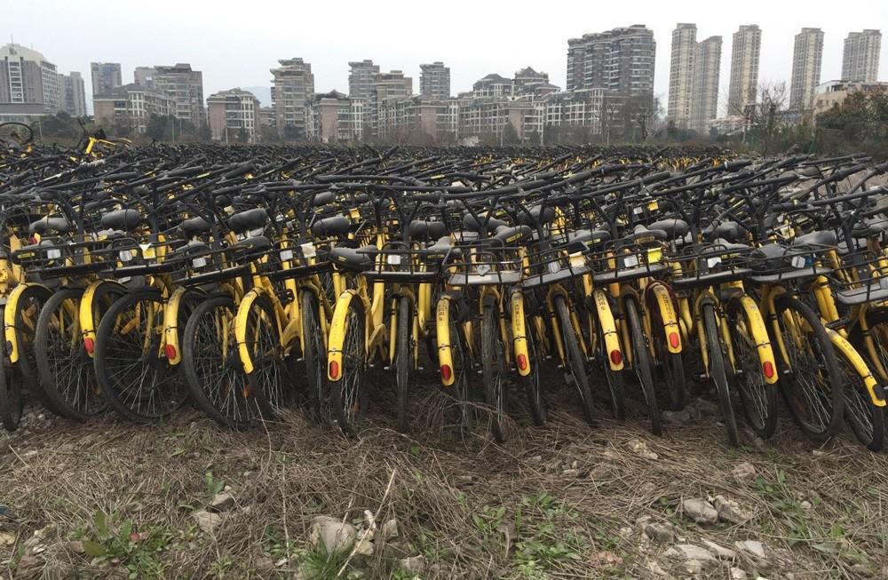 ofo-bikes.jpg