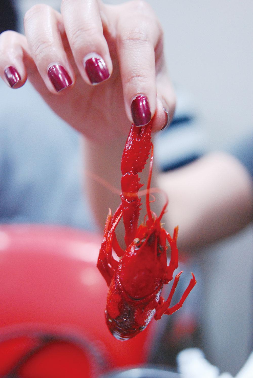 Crayfish (xiaolongxia) in Shanghai