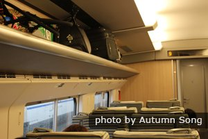 high speed trains luggage rack